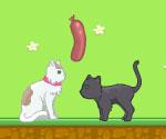 Aşık Hayvanlar Oyunu Oyna