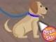 Köpek eğiticisi