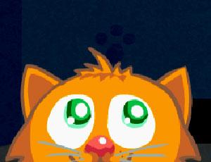 Kedi Görevi Oyunu