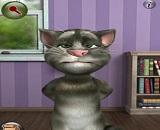 konusan-kedi-tom